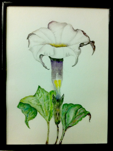 Marli-Santos_purpleflower_leaves_blackframe_8.5x11_watercolour